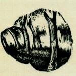 σάρωση0017